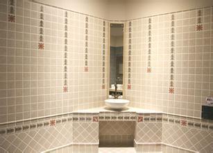 [新聞] 10條浴室清潔保養小技巧推薦強力清除細菌