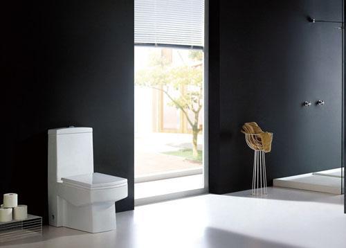 [新聞] 家居馬桶須清潔 避免帶來疾病隱患