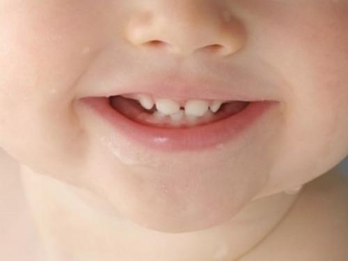 [新聞] 寶寶出牙期護理 要保持口腔清潔